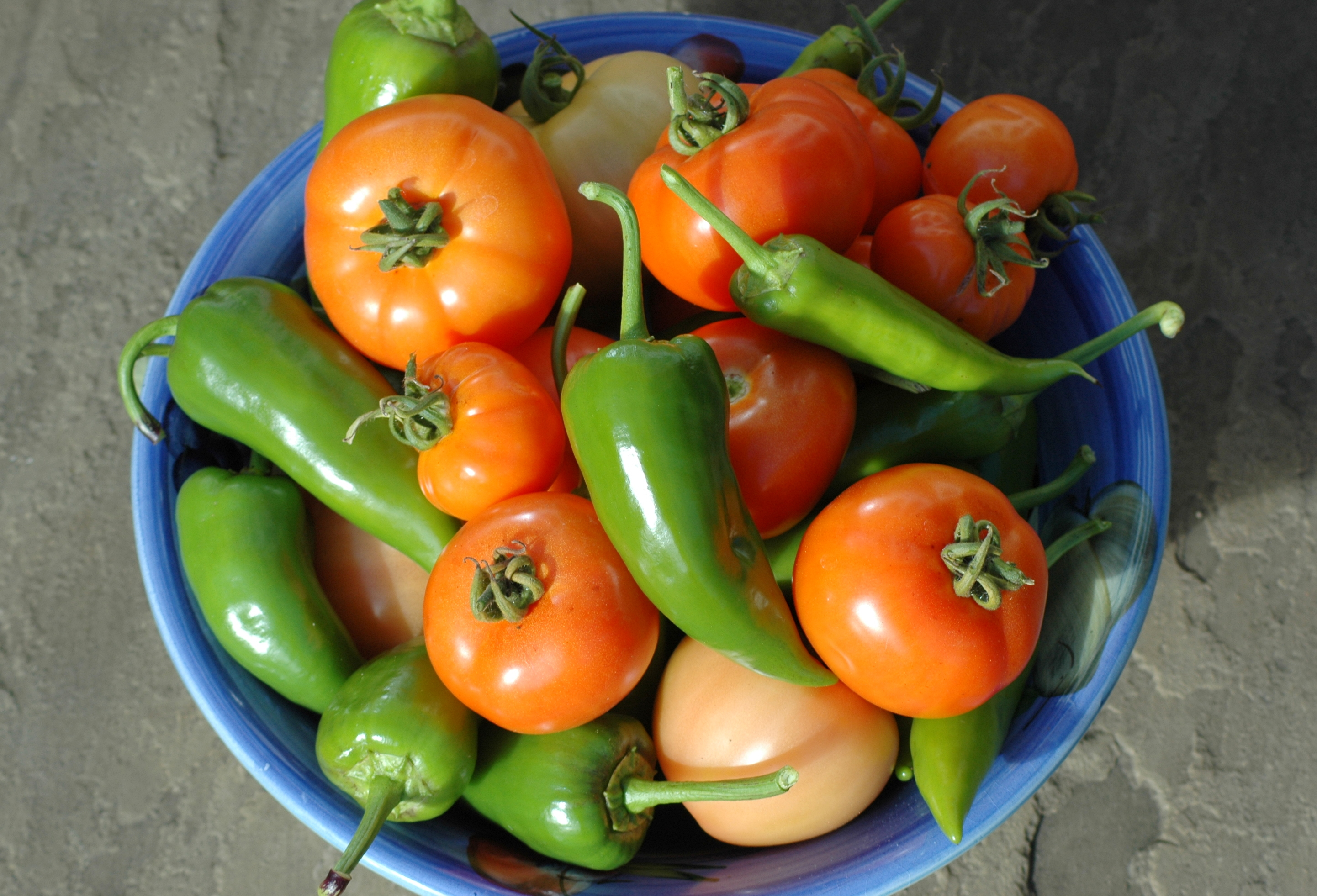 Grow your own salsa garden